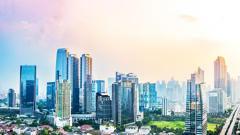 Company Incorporation Options in Indonesia