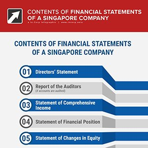 Singapore Company Financial Statements- What They Need To Cover