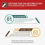 filing your singapore company tax returns options